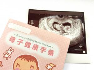 母子手帳ケースの画像