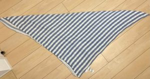 エイデンアンドアネイを三角に折った画像